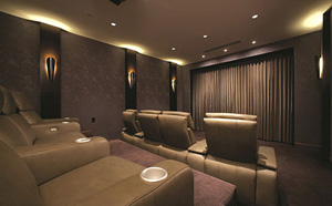 service_areas_home_theater_04